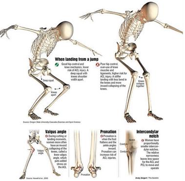 Koik lihased ja liigesed voivad olla ainus Sormede varvid