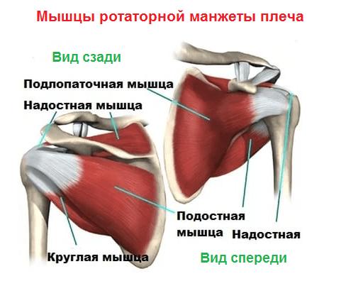 ola liigese artroos
