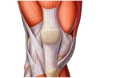 Liigeste ravi on kahjulik Artrohi liigese raviks
